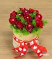 Rose Preziose