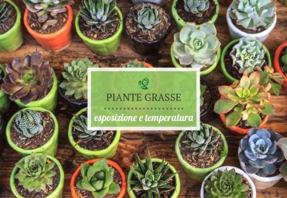 Temperature ed esposizione delle Piante Grasse