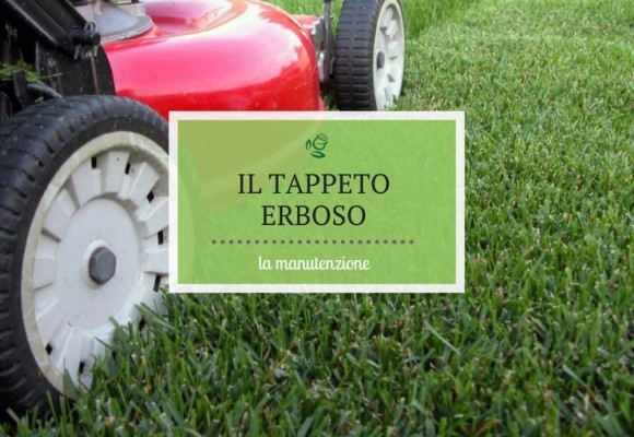 La manutenzione del tappeto erboso