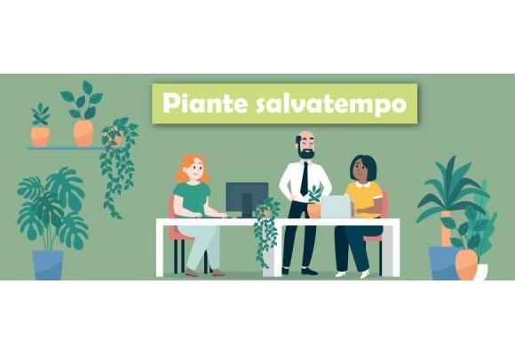 Le piante salvatempo