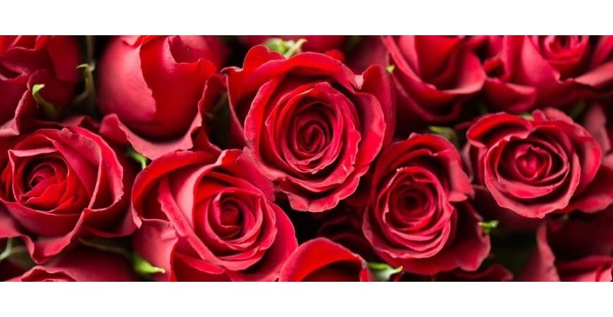Anniversario Matrimonio Quante Rose.Significato Numero Di Rose Rosse Fiori Per San Valentino Blog