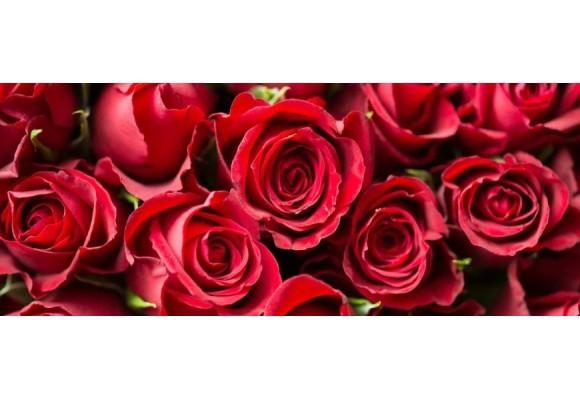 Significato numero di rose rosse - Fiori per San Valentino